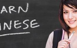 China Success Institute