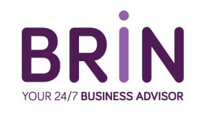 BRiN Logo
